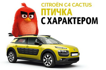 Angry Birds прилетели к Citroen