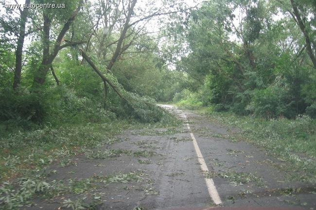 Погода готовит водителям опасные сюрпризы