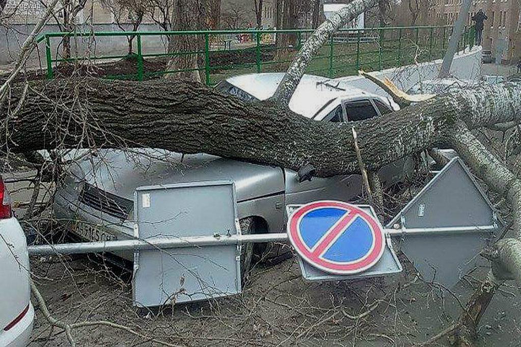 Героев парковки наказали неподъемным штрафом (+ Видео)