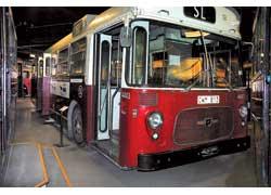 Автобус Panter Cub (1967 г.) – представитель семейства «больших кошек» от фирмы Leyland, куда входили также модели Leopard, Tiger и Royal Tiger. Мест – 84 (сид. – 39). Мотор – диз., 160 л. с.