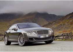 В прошлом году светская львица обзавелась Bentley Continental GT за 300000 долларов.