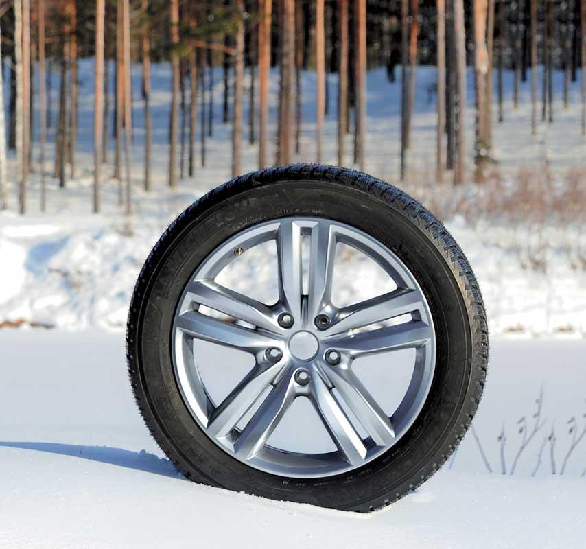 Картинки по запросу Michelin Latitude Alpin 2 фото