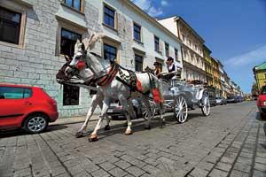 Одна из фишек для туристов– катание на конных экипажах. Также к их услугам автобусики на электротяге с разными