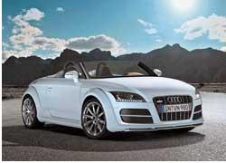 Очередной образец перспективного спидстера TT clubsport quattro представила компания Audi на слете фанов в Австрии.