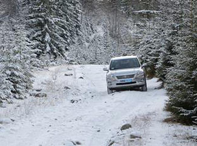 В горы зимой на Toyota
