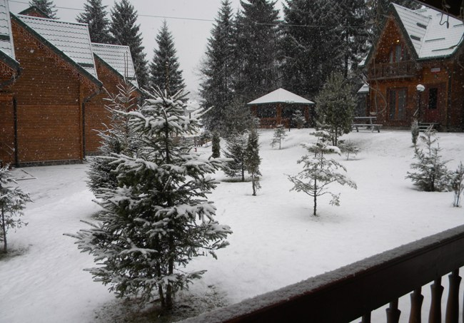 Снег в Буковеле