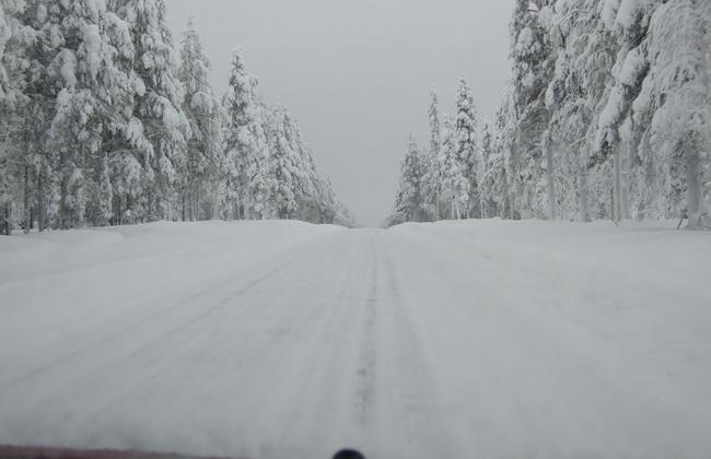 Зимнее дизтопливо «Арктика» проверят в реальных условиях