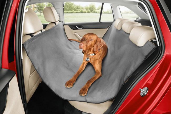 Skoda предлагает аксессуары для собак