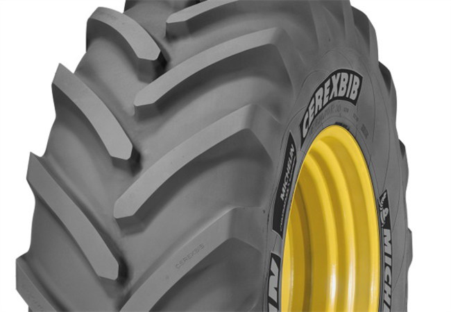 Шина Michelin CerexBib IF1000/55 R32 CFO