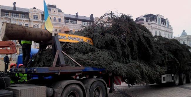 Специальный автопоезд доставил в Киев главную елку страны (+ВИДЕО)